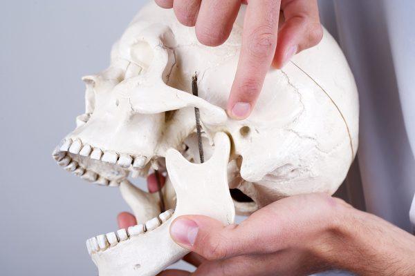 Ruidos en la mandíbula